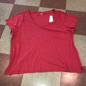 J crew v neck T-shirt 3x rusty red